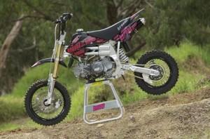 195cc Pitbike
